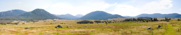 The Yankee Hat Trail at the Namadgi National Park