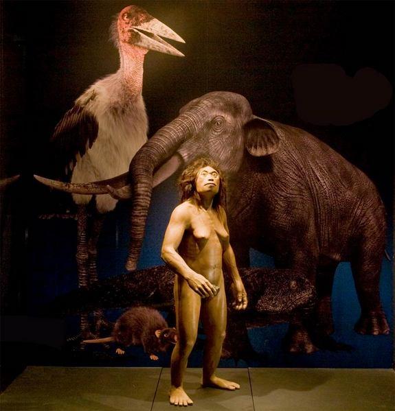 Homo floresiensis, Live Science 20130426