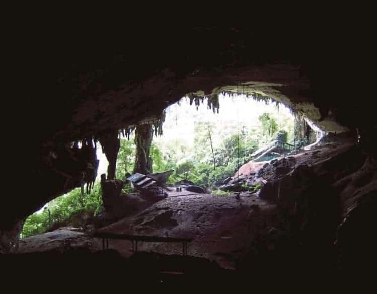 More Studies On Niah Caves Skull