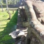 Decapitated statue from Angkor Thom. Source Phnom Penh Post 20140814
