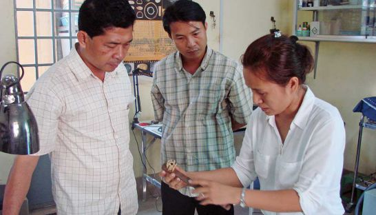 Training in the German-Cambodia Conservation School. Source: Phnom Penh Post 20141003
