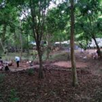 Excavations at Angkor Wat. Source: Alison in Cambodia 20150712