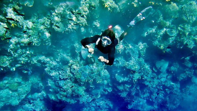 Underwater archaeology in Papua