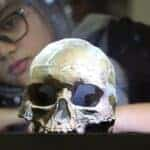 Muzium Negara Pieces Together Origins Of Mankind With Peking Man Exhibit