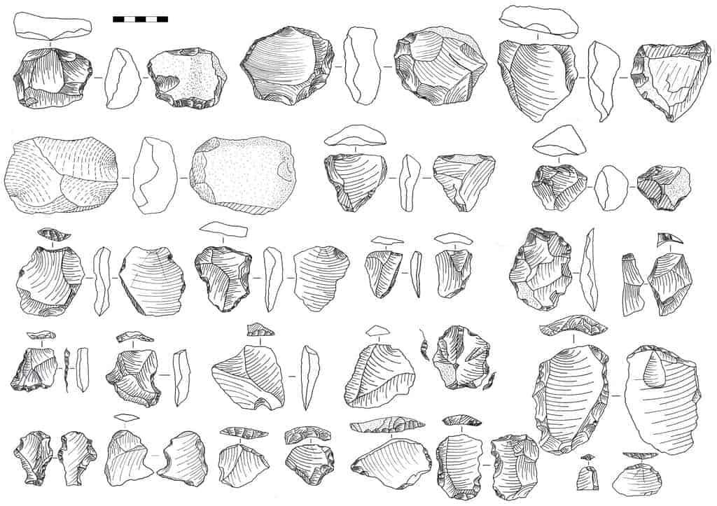 Hu et al, 2018. Nature