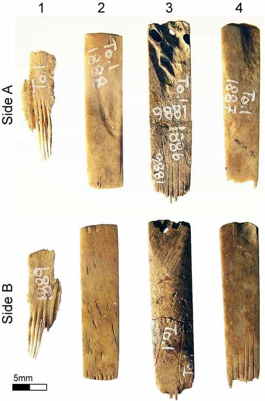 Ancient Tattooing in Polynesia | doi:10.1080/15564894.2018.1561558