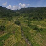 Demystifying the age of the Ifugao Rice Terraces to decolonize history