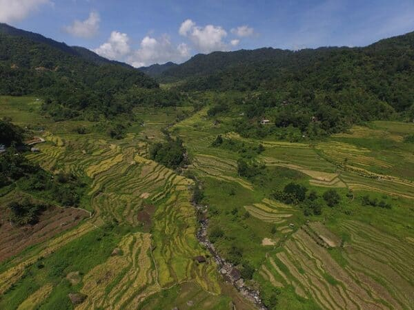 Ifugao Rice Terraces. Source: Ifugao Archaeological Project, via Rappler 20190414