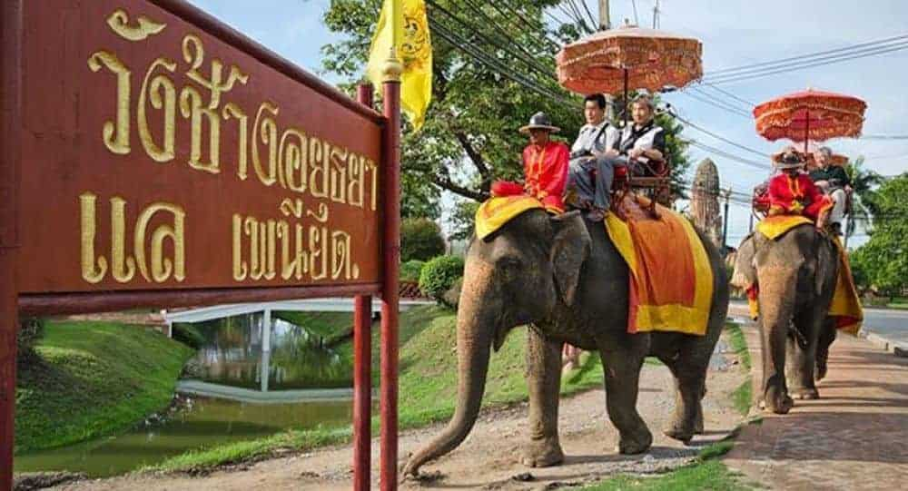 Elephant riding in Ayutthaya. Source: The Nation 20190621